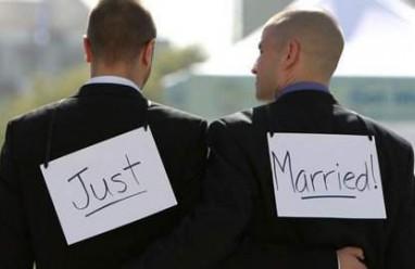 đồng tính, gen, di truyền, nghiên cứu, gay