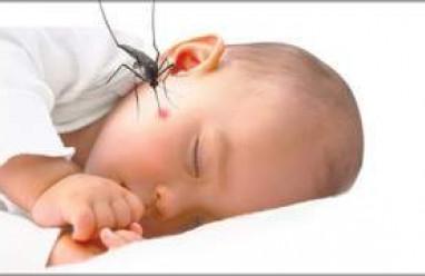 kiến thức sức khỏe, kiến thức trẻ sơ sinh, các loại sốt ở trẻ, sốt rét ở trẻ, tác hại, tử vong, phòng ngừa,