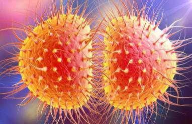 bệnh lậu, triệu chứng của lậu, biến chứng của lậu, phòng bệnh lậu, các xét nghiệm chẩn đoán lậu, xét nghiệm lậu.