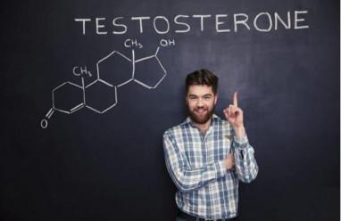 xét nghiệm nội tiết nam, fsh, lh, testosteron, kết quả xét nghiệm nội tiết nam, vô sinh nam, đánh giá chức năng sinh sản nam