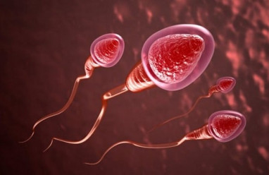 Tránh thai, chất diệt tinh trùng,nonoxinol 9, gel bôi tránh thai, viên đặt âm đạo tránh thai