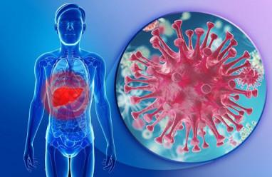 viêm gan b, đường lây truyền viêm gan b, triệu chứng viêm gan b, biến chứng viêm gan b, phòng biến chứng viêm gan b.