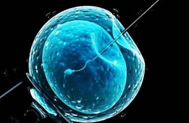 Tầm quan trọng của xét nghiệm beta hCG trong thụ tinh ống nghiệm