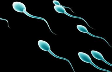 Tinh trùng di động kém nam giới cần làm sao để cải thiện?