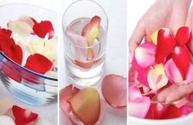 Nước hoa hồng,chăm sóc da, làm đẹp, làm đẹp mùa đông, kem dưỡng ẩm, kem dưỡng da