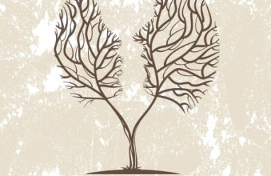 cửa sổ tình yêu, tâm lý, ngành tâm lý, hiểu rõ tâm lý người khác, ước mơ, vững tin, chữa bệnh, tịnh thân, tổn thương, lắng nghe, thấu hiểu, chia sẻ