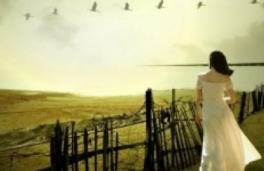 chia tay, tình yêu sinh viên, lo lắng, hạnh phúc, mặc cảm bản thân, bệnh tật, cửa sổ tình yêu