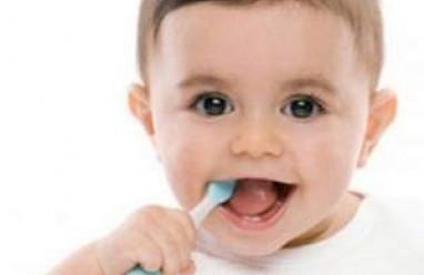 kiến thức trẻ sơ sinh, trẻ sơ sinh 0 đến 12 tháng, trẻ từ 1 đến 6 tuổi, chăm sóc trẻ sơ sinh, bệnh thường gặp ở trẻ,