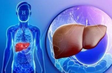 xét nghiệm chức năng gan, xét nghiệm men gan, chỉ số men gan