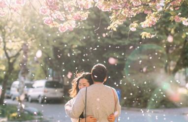 thuyết phục, ngăn cản, tình yêu, buông tay, bình tĩnh, vội vàng, cửa sổ tình yêu