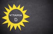 thực vật, vitamin D từ thực vật, thực phẩm giàu vitamin D, cua so tinh yeu