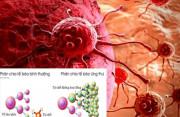 Tế bào ung thư, bí ẩn ít biết, cua so tinh yeu