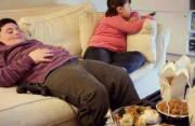 Béo phì ở trẻ em, béo phì, thừa cân, bệnh tim mạch, tiểu đường, ung thư, cua so tinh yeu