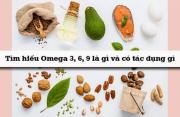 Axit béo Omega là gì? Tác dụng của Omega 3 6 9 trong làm đẹp