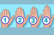 Hình dáng bàn tay của bạn như thế nào, điều đó tiết lộ rất nhiều điều về con người bạn