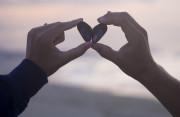 thuyết phục, tình cảm, cố gắng, rõ ràng, cơ hội, quyết tâm, tình yêu, cửa sổ tình yêu