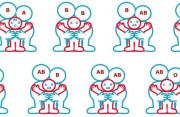 nhóm máu, 0, AB, B, nhóm máu của con, con tinh ra, tương đồng, cuasotinhyeu