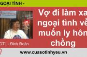 Vợ đi làm xa ngoại tình về muốn ly hôn chồng - Đinh Đoàn