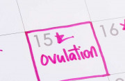 Quan hệ trước ngày rụng trứng 4 ngày có thể có thai không?