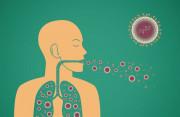 Nguyên nhân gì gây ra bệnh lao ở người?