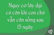 nguy-co-lay-dai-co-con-khong-khi-cho-van-con-song-sau-15-ngay