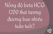 Nồng độ HCG 1200 thai tương đương bao nhiêu tuần tuổi?