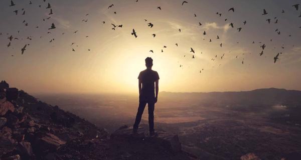 từ chối, chỉ là bạn, theo đuổi đến cùng, không trả lời, không còn hy vọng